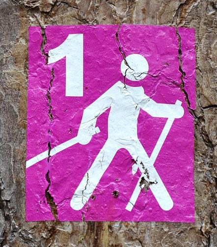 coach-sport-sante-74-logo-rose-marche-nordique2